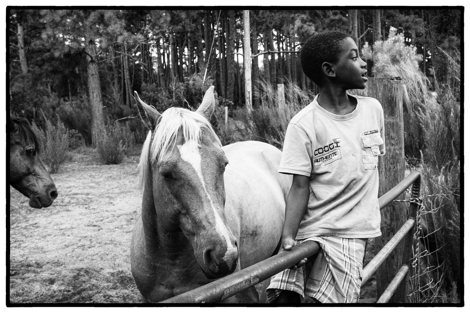 A young boy on Sapelo Island hangs out with a neighbor's horses.