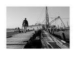Backmans Seafood Docks
